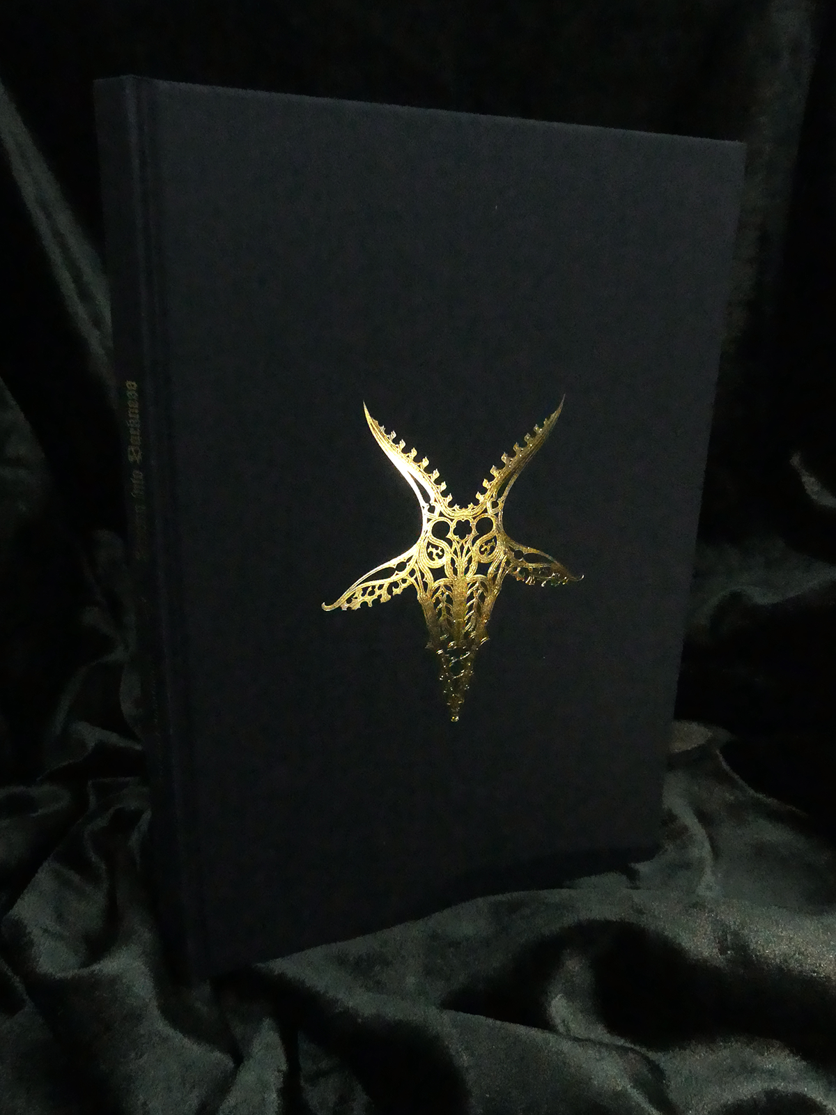 Drawn into Darkness - The Book